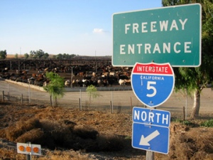 Harris Feedlot Interstate 5 Colinga