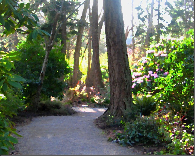 Finnerty Garden at the University of Victoria - with added painting effect - by Bruce Witzel